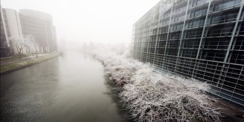 European winter at the parliament in Strasbourg on February 12, 2015 / Flickr / European Parliament / (CC BY-NC-ND 2.0